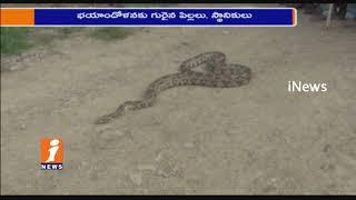 Snake Python Hulchul In Purimetla   Prakasam District   iNews