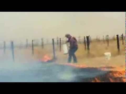 Bushfires grip Australia's Victoria state News Video