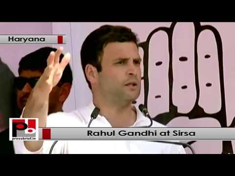 Rahul Gandhi at Sirsa, Haryana to address Congress election rally