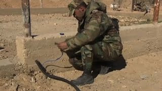News Video - IS Mines Cleared Around Palmyra's Ancient Ruins