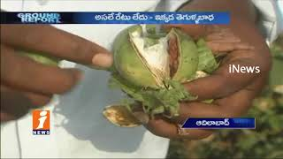 Huge Losses To Cotton Farmers Due to Pink Boll Worm | Ground Report | iNews