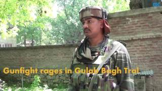 Gunfight rages in Gulab Bagh Tral