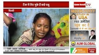 दिल्ली - स्कूल के सेप्टिक टैंक में गिरी चार साल की मासूम, मौत