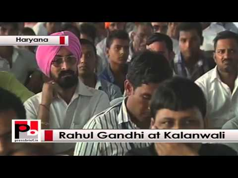 Rahul Gandhi seeks people's support for Congress at Kalanwali, Haryana