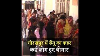 गोरखपुर में डेंगू का कहर, कई लोग हुए बीमार