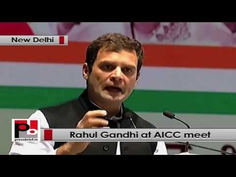 Rahul Gandhi- Congress is a party which respects constitution and its democratic principles