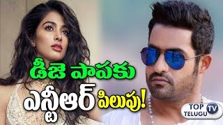 Pooja Hegde Heroine For NTR And Trivikram Film || Junior NTR and Pooja Hegde at Trivikram Movie