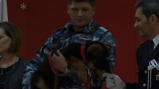 Raw- Russia Gives Puppy After Dog Killed In Raid Video