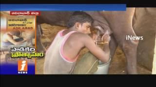 Telangana Govt Plans To Dairy Farming Developments In Adilabad | iNews