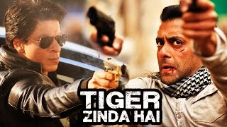 After Tubelight, Shahrukh Khan's CAMEO In Salman's Tiger Zinda Hai?