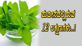Amazing 12 benefits of Mint leaves | Kannada Health Videos | Top Kannada TV